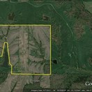 162.9 acres; Hwy N; Lewis County- Hunting Lease