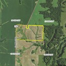 73.74 acres; County Rd 1160; Randolph County- Hunting Lease