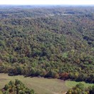 132 acres; Pike Road 9117; Pike County