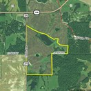 119 acres; 150th Ave; Lewis County - Hunting Lease