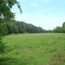 40 acres Crawford County, Missouri