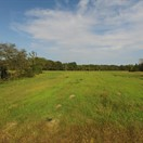 40 acres Shelby County, Missouri