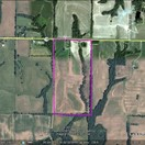 80 acres; Hwy 156; Knox County - Hunting Lease
