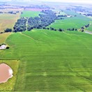 119 acres; Lynx Ave; Macon County