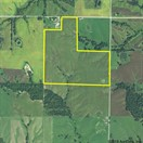 113 acres; Kennel Street; Macon County