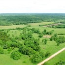 140 acres; Jaybird Lane; Morgan County