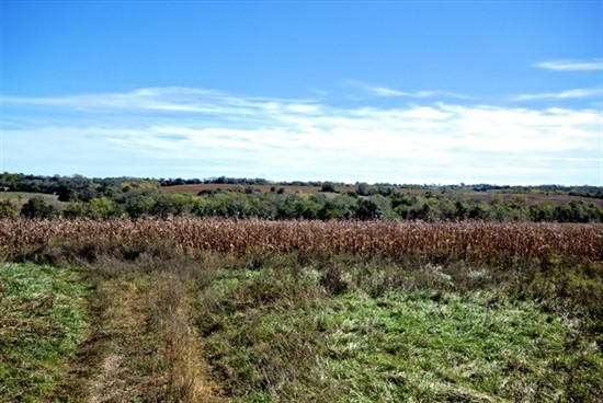 160 acres; Field Dr; Linn County