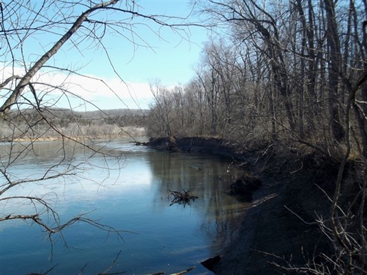 158 acres; 93 Ridle Rd; Miller County