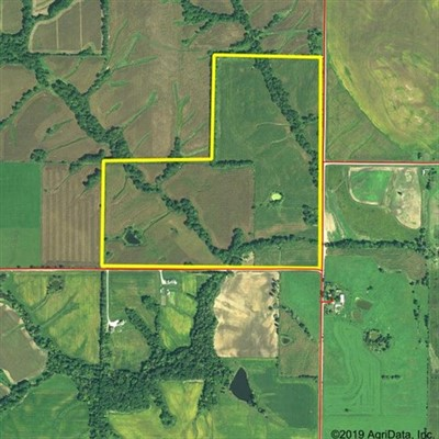 119 acres; County Rd 800; Scotland County - Hunting Lease