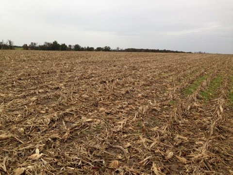 157 acres Pike County, Missouri