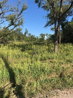 237 acres; Bennett Rd; Elk Creek MO