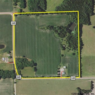 40 acres; County Rd 249; Marion County