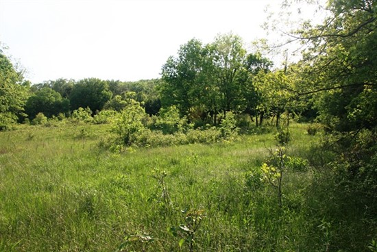 75 acres Gasconade County, Missouri