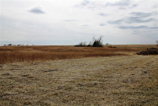 30 acres Linn County, Missouri