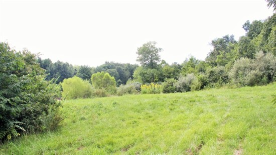 16.8 acres Lincoln County, Missouri