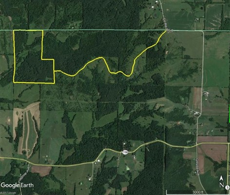 95+/- acres; Glouse Avenue & Co. Road 385; Macon County