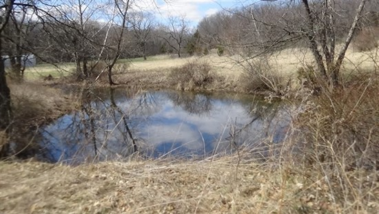 63.16 Acre Hunting Property For Sale in Ralls County, Missouri