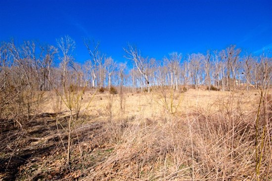 5.11 acres; 32 Kniess Ct.; Lincoln County, Missouri