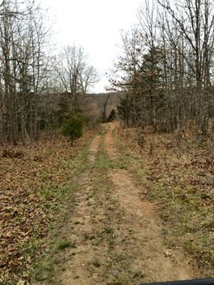 29 Acres of Hunting Property For Sale in Morgan County, Missouri