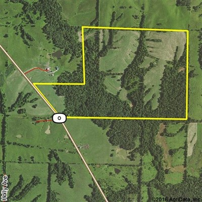 207 acres; Hwy O; Macon County