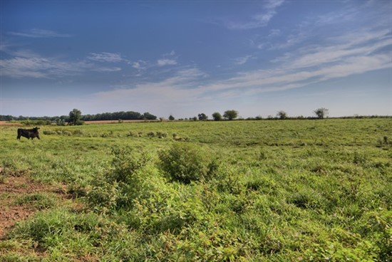 74 acres; Hwy AA; Montgomery County