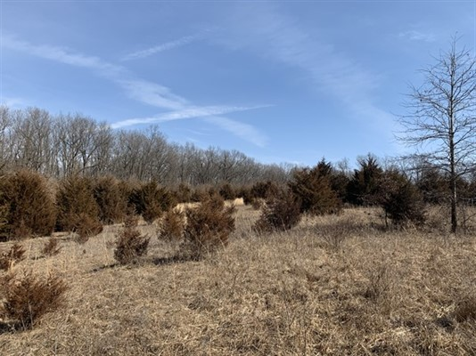 69 acres; London Place; Macon County