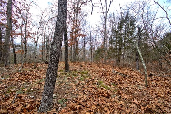 44 acres; Samples Rd; Montgomery County