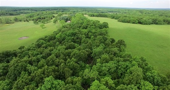 153 acres; Hwy D; Hickory County