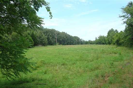 40 Acres Crawford County Missouri Hunting Property For Sale In