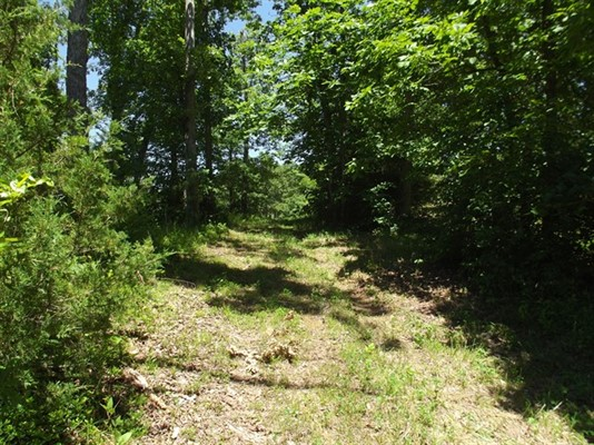 14 acres m/l; Hwy WW & North Stringtown Rd; Warren County