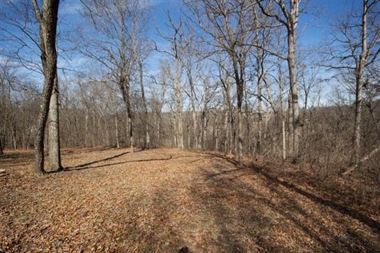 3 acres; Brushy Ridge Ct; Winfield