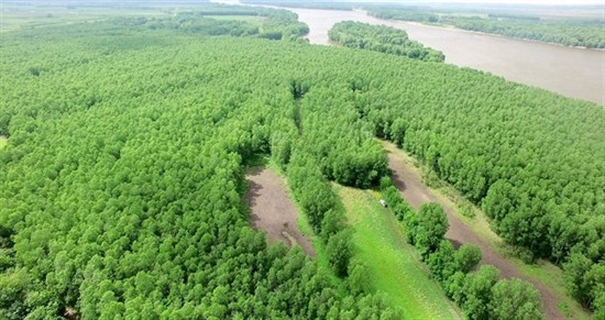 225 acres; Pike Rd 2; Pike County