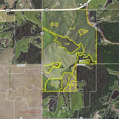 202 acres; Hwy 156; Lewis County - Hunting Lease