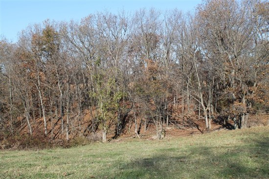 60 acres; County Rd 224; Monroe County
