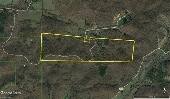 149 acres; County Rd 217; Wayne County Missouri