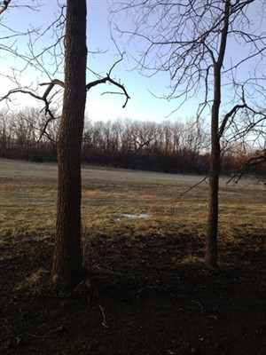 60 acres Pike County, Missouri