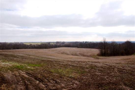 220 Acres in Linn County, Missouri