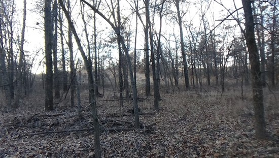 138 acre Recreational Tract in Macon County, MO