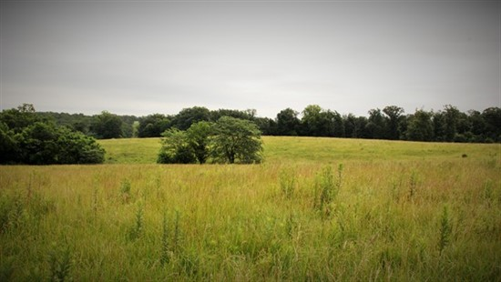97 acres Ralls County, Missouri