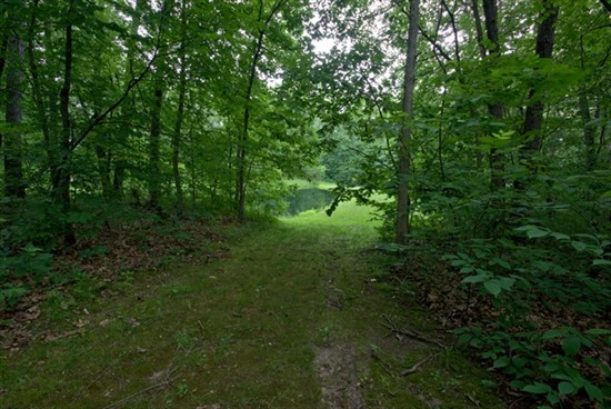 31.2 acres; 75 Bauer Rd, Silex; Lincoln County