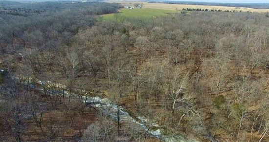 54 Acre Hunting Farm For Sale in Monroe County, Missouri